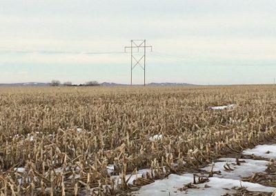 Jones Family Farmland