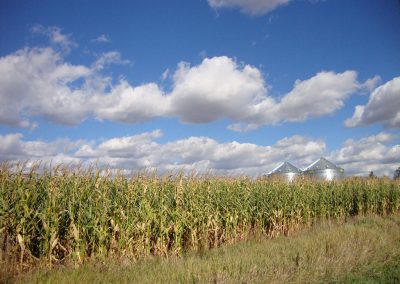 Bennett County Farmland