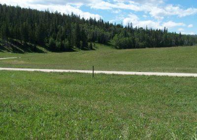 Rapid Creek Road