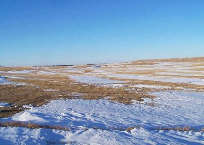 Bennett County Farmland and Grassland