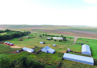 Hanson Family Ranch Auction
