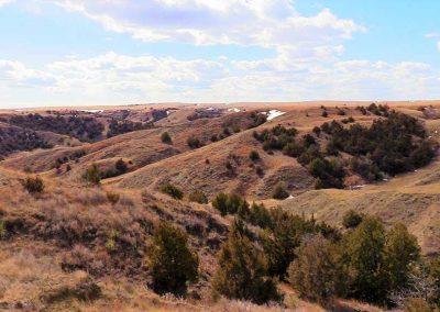 Cedar Breaks Ranch