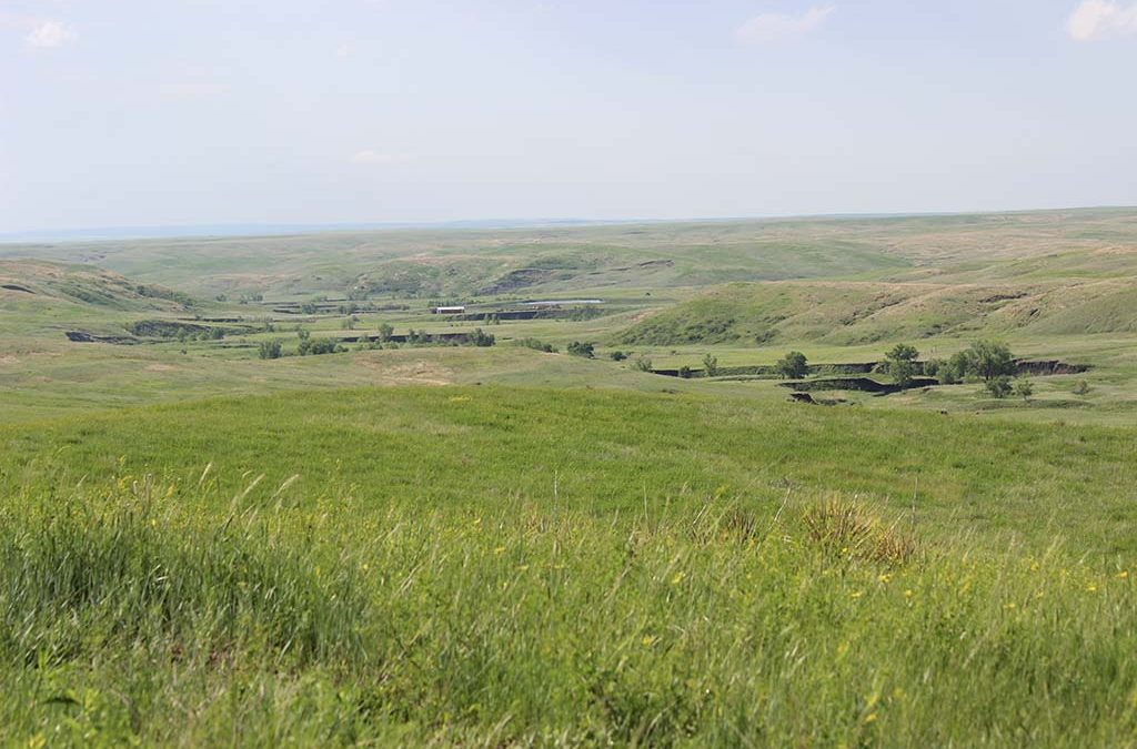 Northstream Investments- Main Ranch