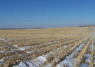 South Central SD Farmland