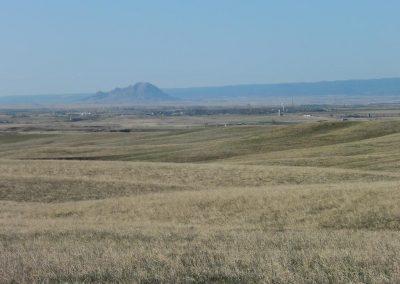 Tres Crosses Grassland
