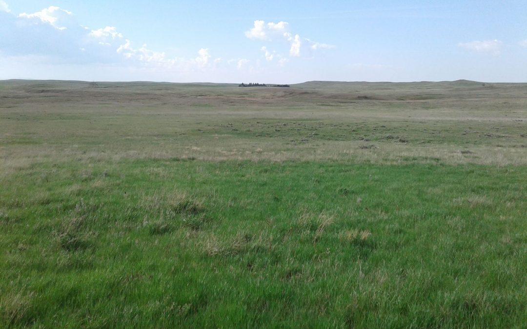 Glad Valley Ranch- Corson County Unit