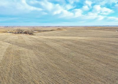 Kapp Family Farmland Auction