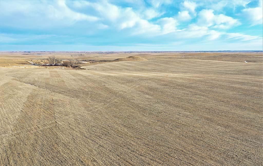 Kapp Family Farmland Auction